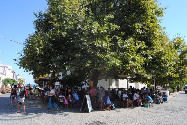 Bozcaada lezzetleri - Çınaraltı Çay Bahçesi